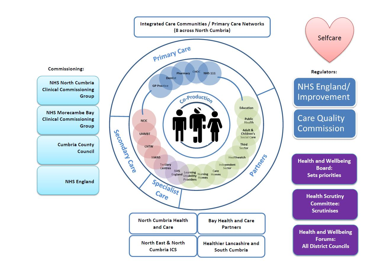 Diagram to illustrate how health and care is made up in north Cumbria